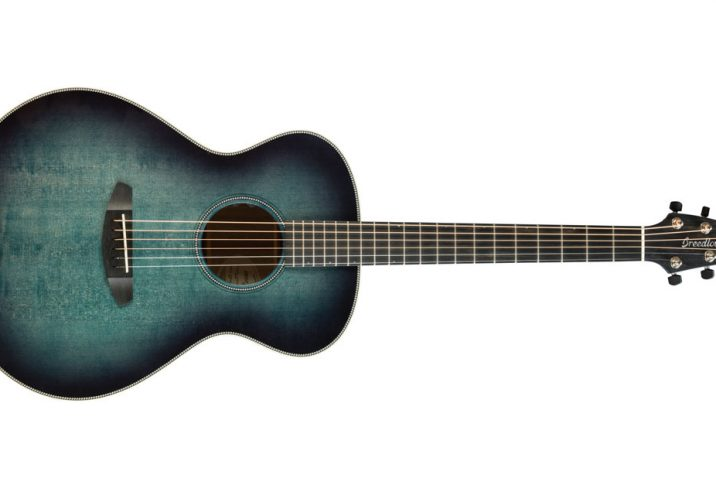 Breedlove Oregon Rogue