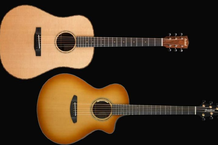 Breedlove Stringed Instruments and Bedell Guitars give guitars away to dealers at NAMM