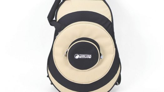 Attitude instrument bags and cases