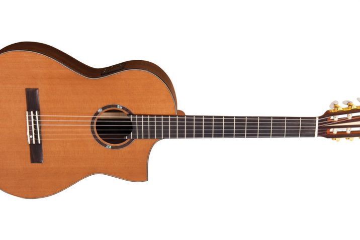 Roger Williams Electro-Acoustic Crossover guitar by Vintage