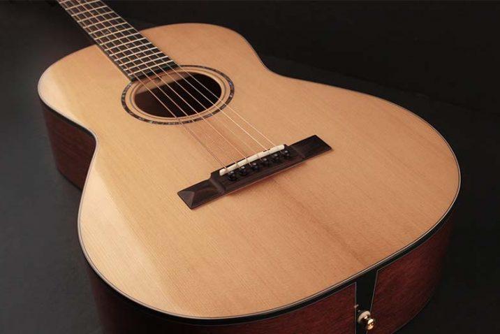 Cort Gold-P6 Parlor Acoustic Guitar