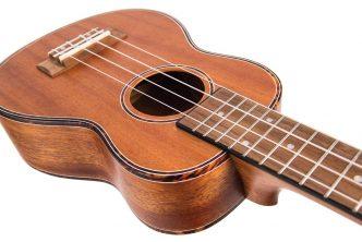 Laka VUS40 ukule