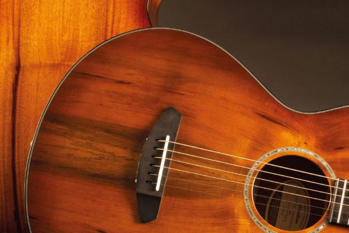 Breedlove Prairie Burst Acoustic Guitar