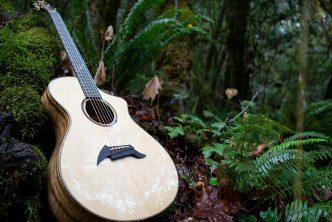 Thirty years of Breedlove Guitars