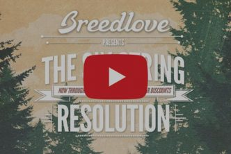 Breedlove announces Six String Resolution promotion