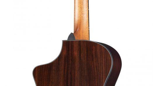 Breedlove Guitars 30th Anniversary Focus SE