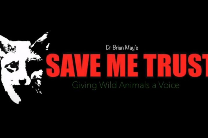 Supergroup Pays Musical Tribute To Brian May's Trust With 'Save Me'